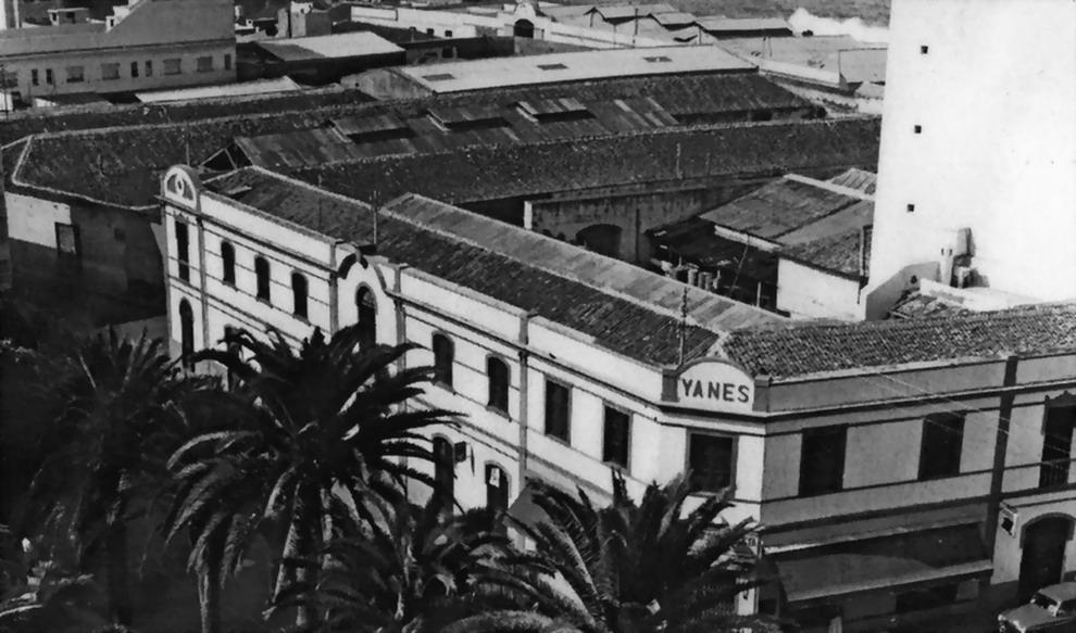Viuda Yanes 1965